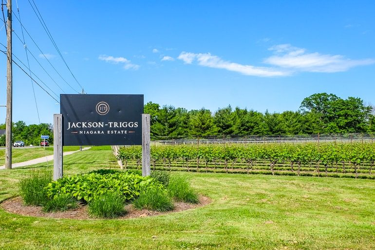 sign for winery with vineyards in the background niagara on the lake