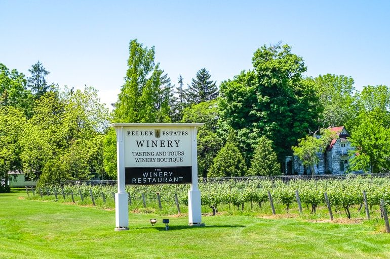 white sign for winery by roadway with vineyard behind peller estates