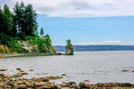 trees and coast stanley park vancouver itinerary penguin and pia