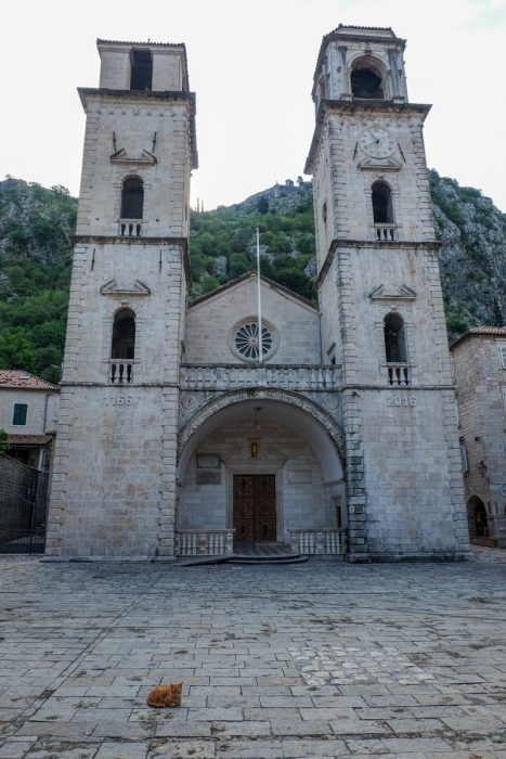 stone cathedral of st tryphon in kotor old town things to do