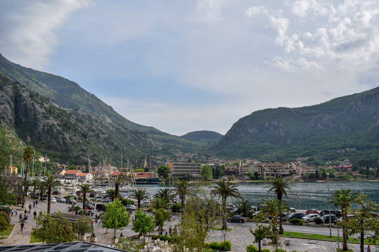 Hafen Kotor Montenegro mit Booten und Palmen