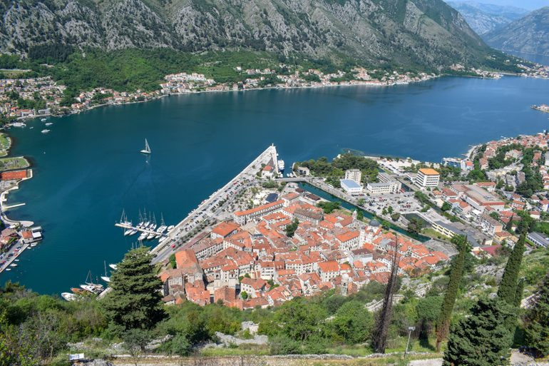 old town kotor from above with bay of kotor in background things do to in kotor