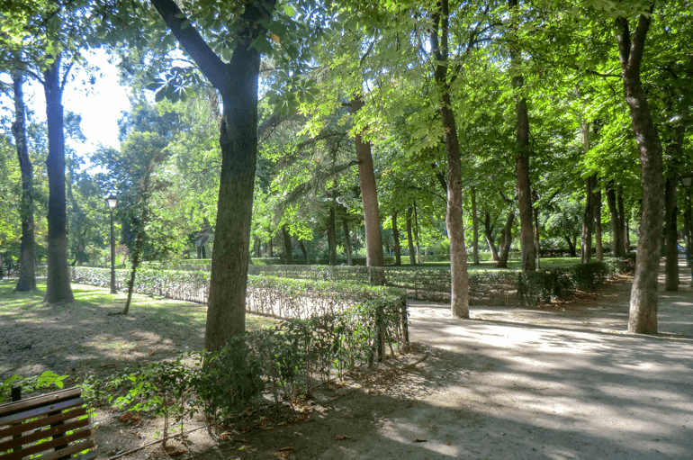 green trees and pathways in madrid things to do