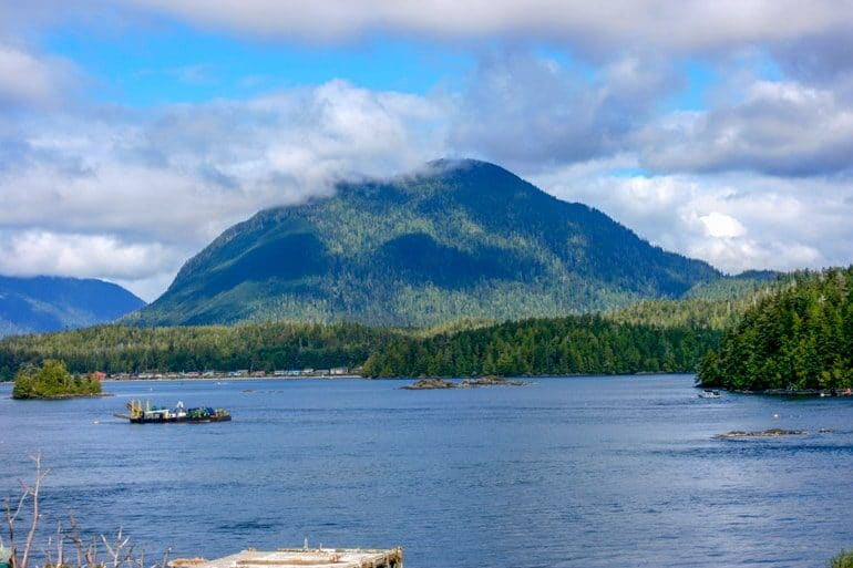 mountain with blue water and green trees in front in tofino canada sightseeing