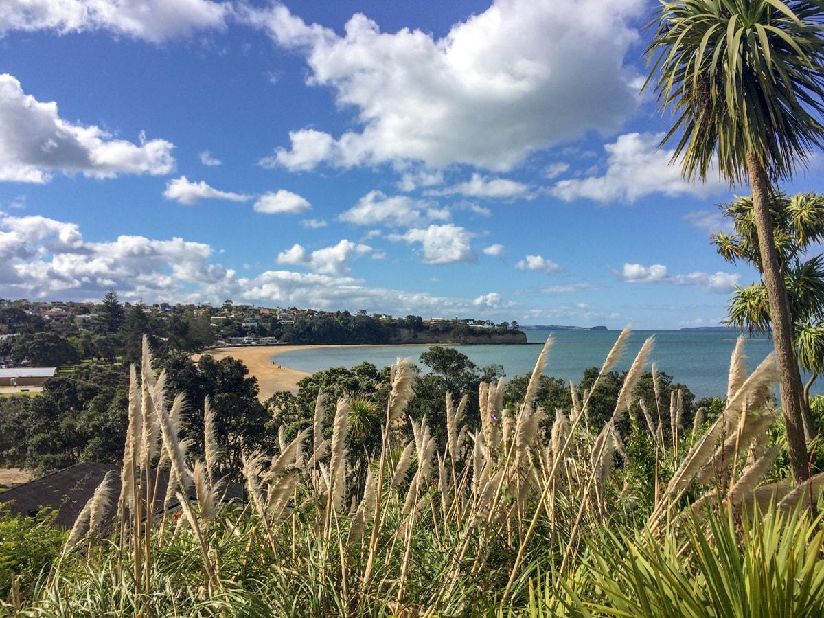 Video Neuseeland Twitter: Neuseeland Sehenswürdigkeiten: Ein Einwohner Teilt Seine