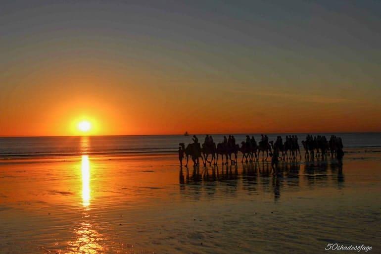 Kamele am Strand mit Wasser bei Sonnenuntergang und orangenem Himmel