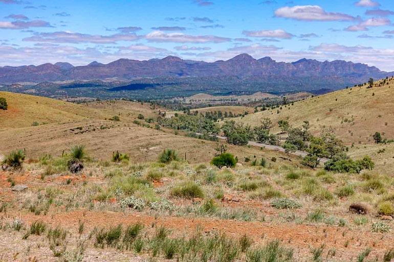 Graslandschaft mit Bergen im Hintergrund Flinders Ranges