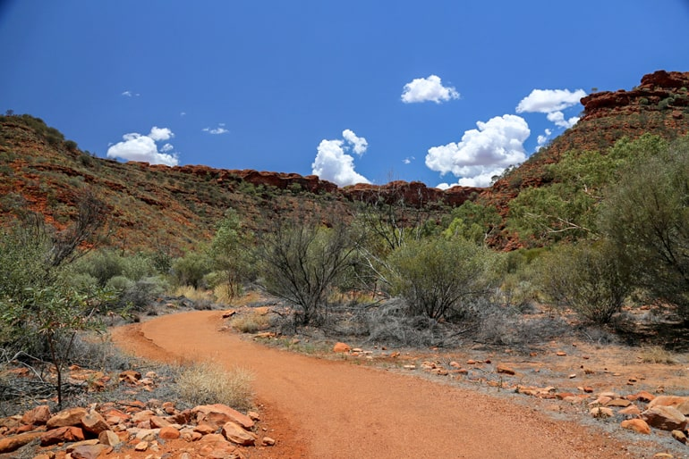 Red desert road with trees kings canyon best places to visit in Australia