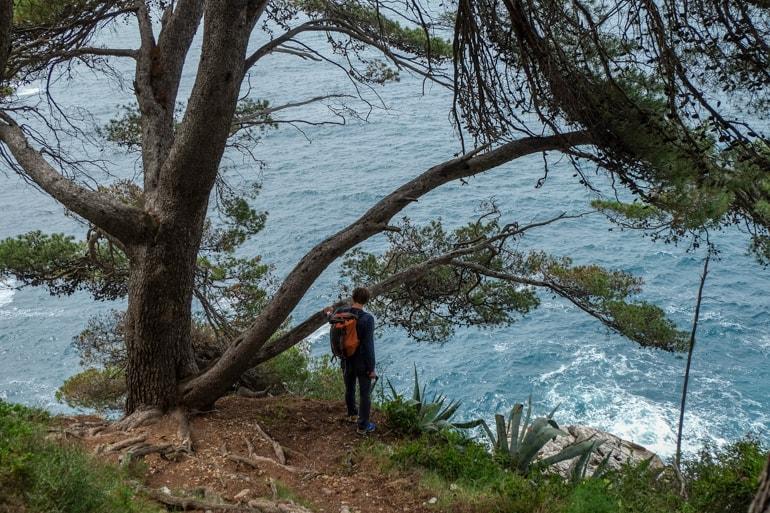 Mann mit Rucksack und bäumen an Küste in Dubrovnik Kroatien