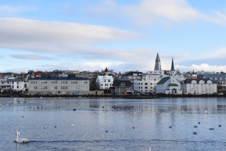 swan in pond with old buildings on shoreline must see places in europe in winter reykjavik iceland