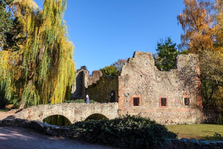 Alte Steinruinen bei See in grünem Park Aschaffenburg