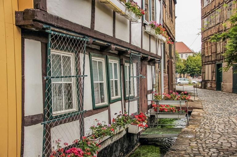 Fachwerkhaus mit Blumen Mühlhausen Deutschland schöne Städte