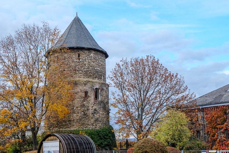 Runder Steinturm mit gefallenen Bäumen Mainz