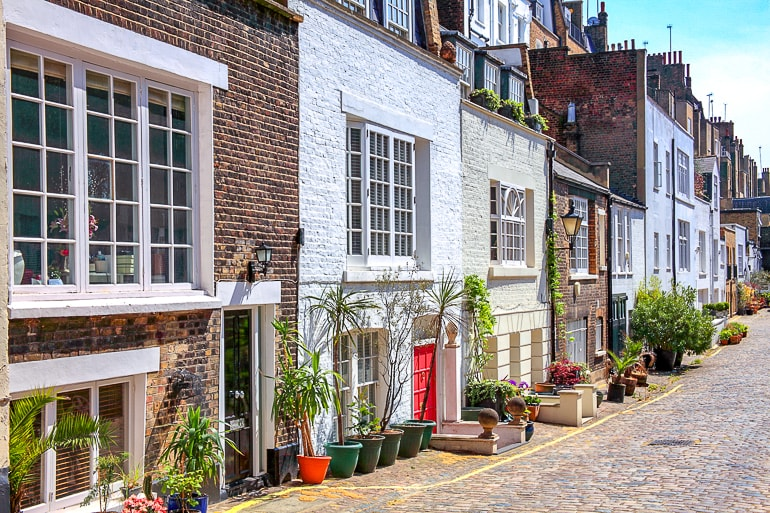 houses with plants along cobblestone street marylebone london