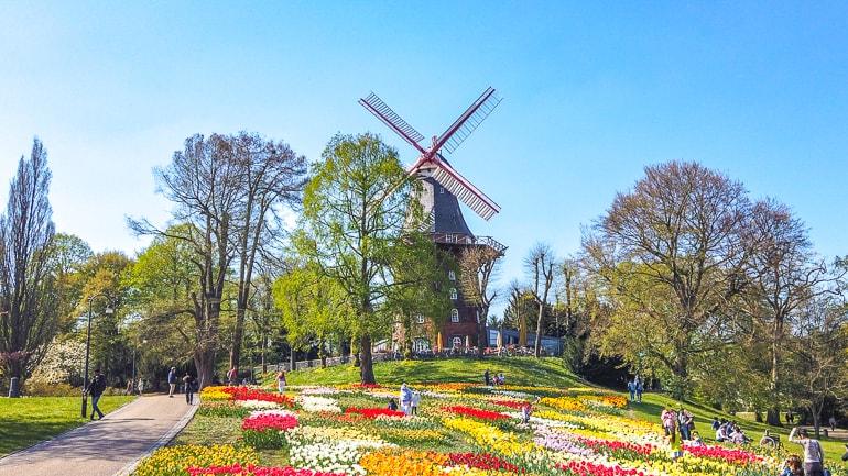 Windmühle mit bunten Blumen und Gras im Vordergrund Bremen Sehenswürdigkeiten