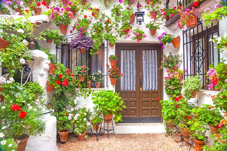 Bunte Blumen an weißer Wand mit brauner Tür