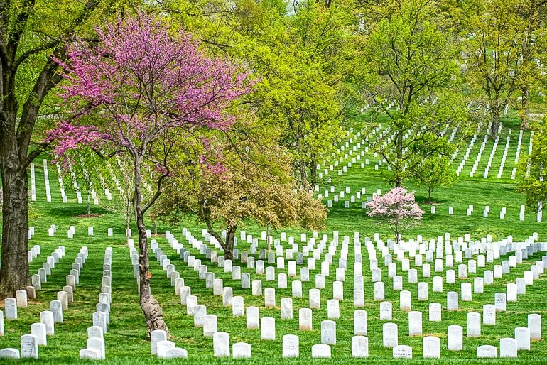 white tombstones with green grass at arlington places to visit in washington dc