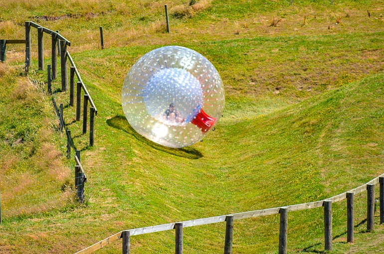 plastic inflatable ball rolling down green grassy hill zorbing new zealand
