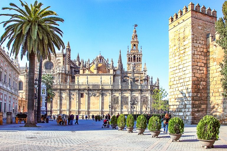 decorated cathedral at end of square with trees and tower nearby in sevilla spain