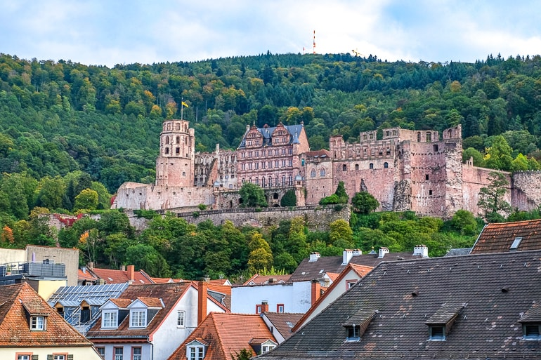 red castle sitting in green hillside above city heidelberg germany