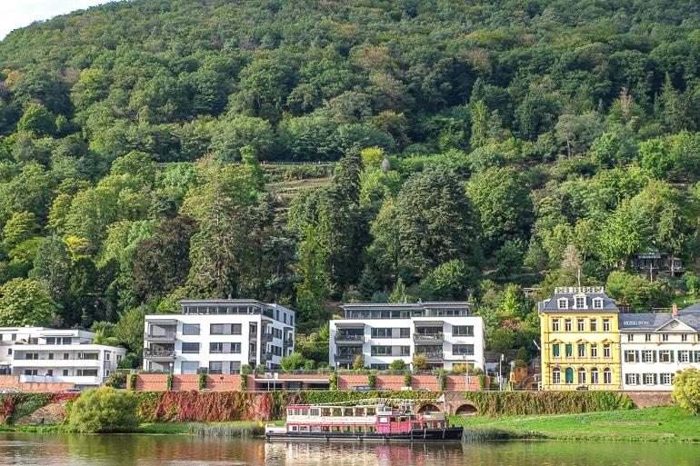 green hillside with boat in river below heidelberg germany