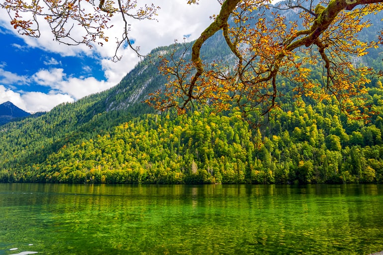 green lake with trees and mountain behind in germany