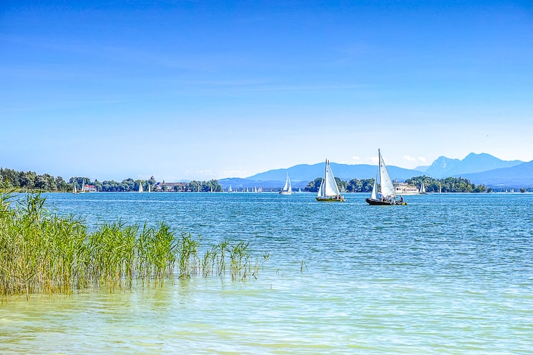 blue lake with green grass beside and sailboats in distance chiemsee