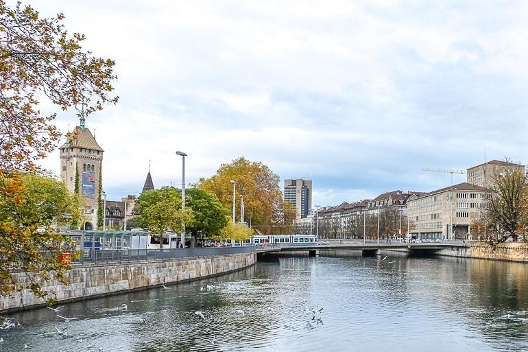 Hotel am Fluss mit Bäumen daneben in Zürich Schweiz