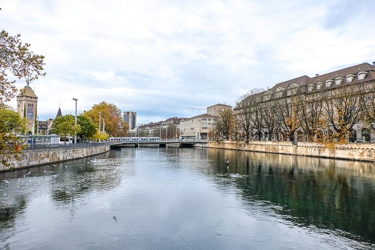 Blick auf Fluss und Gebäude daneben von Brücke aus mit Bäumen an der Seite in Zürich