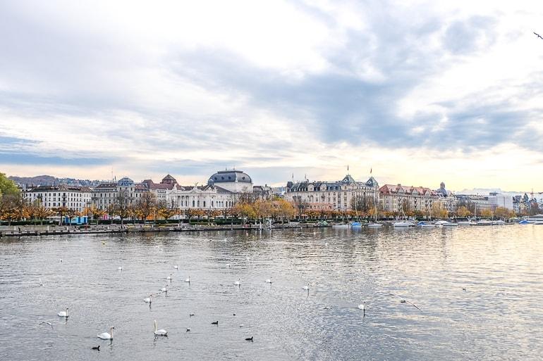 Blick auf See mit Opernhaus und Bäumen im Hintergrund Seefeld Zürich