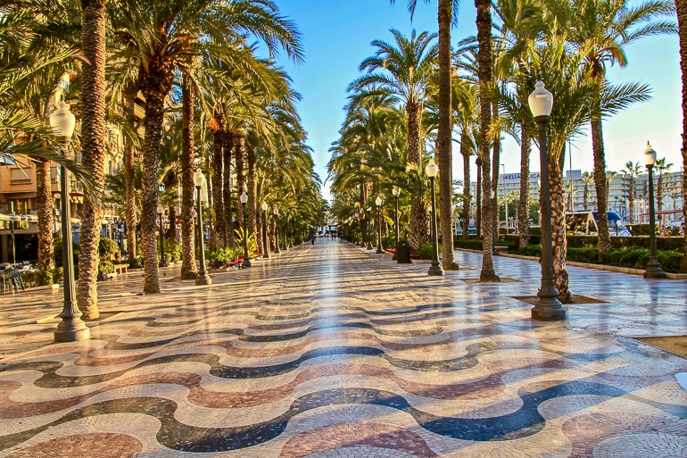 colourful boardwalk with palm trees in alicante spain