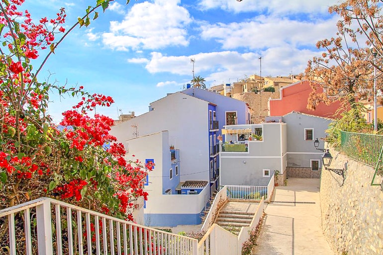 colourful houses with flowers on trees in alicante spain
