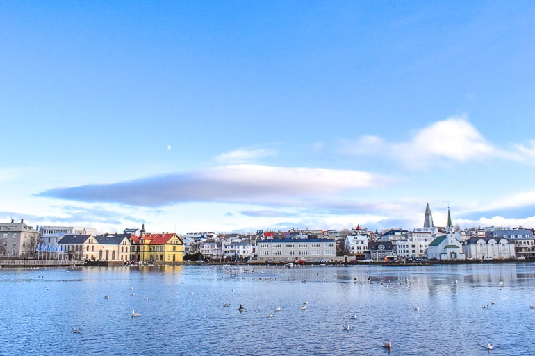 colourful buildings in distance across lake with birds in reykjavik