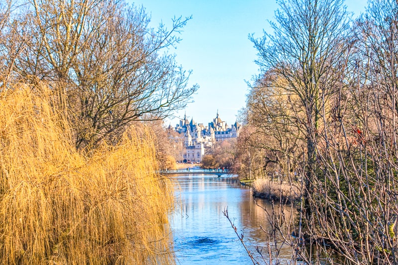 london buildings over water through reeds in st james park